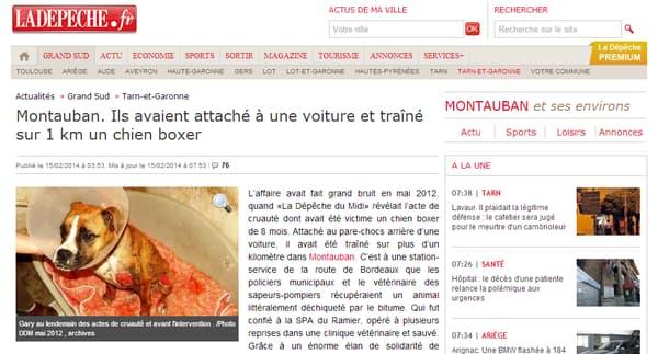 Le 15 février dernier, la Dépêche du Midi publiait une photo du chiot au lendemain du drame.