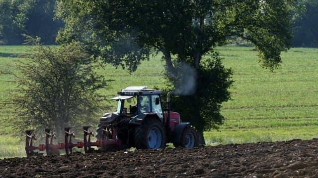 Les ventes de pesticides ont chuté en 2019.