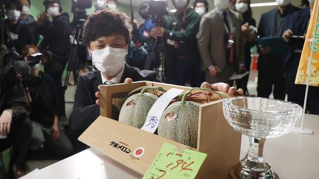 Deux melons japonais vendus 20.000 euros aux enchères
