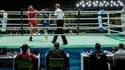 Un tournoi de boxe amateur à Rio (Brésil) en décembre 2015