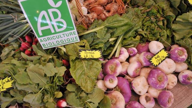 7 Français sur 10 déclarent consommer régulièrement des produits (légumes, laitages, ...) issus de l'agriculture biologique. (image d'illustration)
