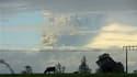Colonne de fumée et cendres au dessus du volcan Puyehue, près de la ville chilienne d'Osorno. Une chaîne volcanique au Chili est entrée samedi en éruption, créant un nuage de cendres qui a touché également le nord de la Patagonie argentine. Les autorités