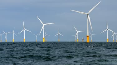 En 20104, les énergies renouvelables ont employé 1,09 million de travailleurs.