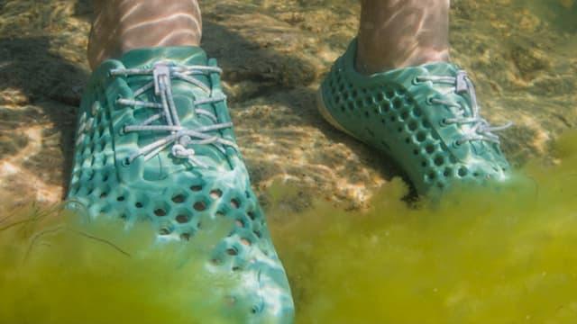 Ces chaussures sont fabriquées à base d'algues.