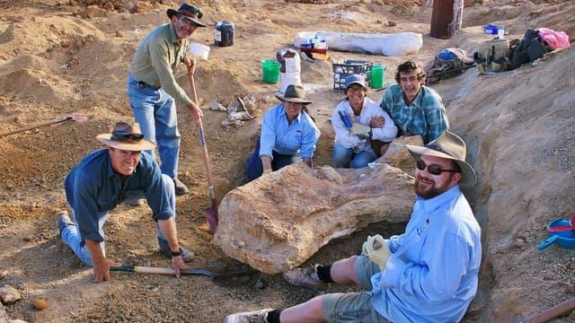 Les fossiles de dinosaure découverts dans le bassin d'Eromanga en 2006 (photo d'illustration)