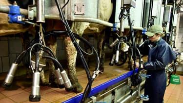 Les producteurs sont pénalisés par les faibles cours du lait
