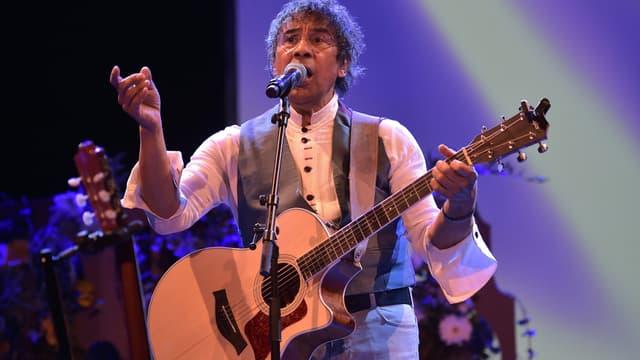 Laurent Voulzy sur scène en 2015