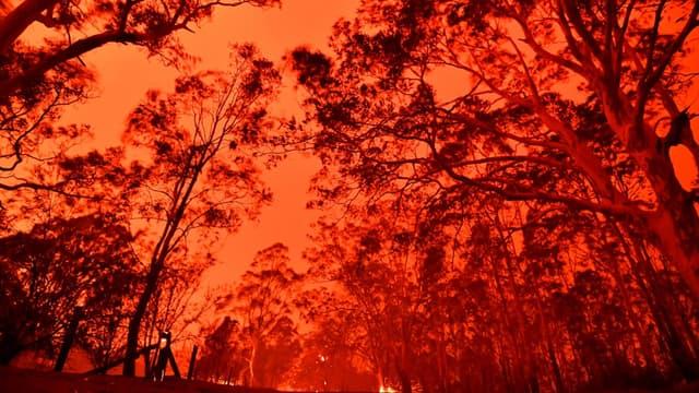 Le ciel australien coloré par les importants incendies près de la ville de Nowra, le 31 décembre 2019, en Australie