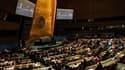 L'Assemblée générale des Nations unies s'est prononcée jeudi par vote en faveur de l'admission du Soudan du Sud, qui devient le 193e membre de l'organisation internationale. /Photo prise le 14 juillet 2011/REUTERS/Shannon Stapleton