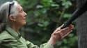 La primatologue Jane Goodall, le 23 novembre 2013 au Chili.