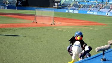 Un stade de baseball au Japon