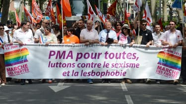 Des manifestants à la gay pride de Lyon en juin 2013.