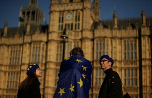 Des manifestants devant le Parlement britannique, le 26 février 2019 à Londres