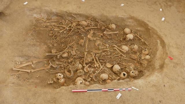 Découverte d'une sépulture collective souterraine de la fin du néolithique dans la Marne