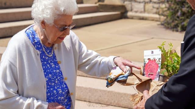 Elizabeth II reçoit la rose faite en hommage au prince Philip