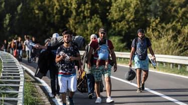 Des migrants marchent en direction de la Croatie le 17 septembre 2015