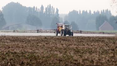 Les agriculteurs, hormis les céréaliers, ont vu leurs revenus augmenté de 1% en moyenne.