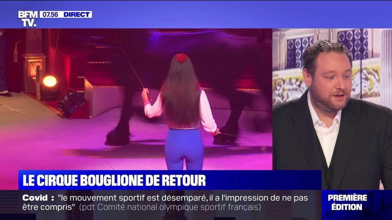 Le cirque Bouglione de retour - 27/10