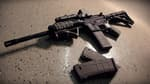 En 2017, le Famas (fusil d'assaut de la manufacture de St Etienne) a cédé la place au HK416, un 5,56 allemand utilisé par plusieurs pays d'Europe.