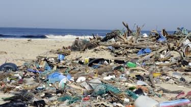 Des déchets rejetés par la mer sur la plage de Mimizan, dans le sud-ouest de la France, en mars 2014.
