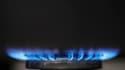 """Les services du Premier ministre, François Fillon, devraient annoncer vendredi une hausse en France du prix du gaz """"à peine supérieure à 4%"""" pour le 1er janvier 2012, selon une information du Figaro. /Photo d'archives/REUTERS/Stephen Hird"""