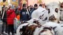 A Notre-Dame-des-Landes, en Loire-Atlantique, où des agriculteurs ont fait brièvement stationner un troupeau d'une quinzaine de boeufs devant la mairie, pour manifester leur opposition au projet d'aéroport dans cette commune. Six opposants au projet ont p