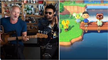 Sting et Shaggy - Animal Crossing