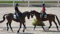 Il est bénéfique de parler à un cheval comme on parle à un bébé, selon une étude de l'Institut national de recherche pour l'agriculture, l'alimentation et l'environnement. (Photo d'illustration)