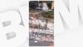 Des sangliers ont été pourchassés par des chasseurs, en pleine ville à Saint-André-de-la-Roche, le jeudi 21 octobre.