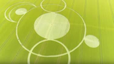 Les crop circles apparus dans un champ du Cher, dans la nuit du 1er au 2 juin.