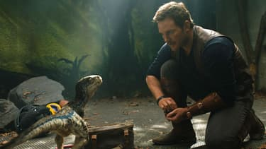 "Chris Pratt dans ""Jurassic World: Fallen Kingdom"""