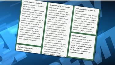 """Capture d'écran du site lancé par une professeur de lettre, recensant les """"anti-perles du bac""""."""