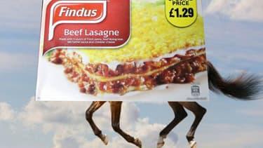 L'une des -nombreuses- parodies moquant les lasagnes Findus.