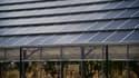 En Sardaigne, sous ces serres solaires devait être cultivé de l'aloès créant ainsi des emplois. Aujourd'hui, seules des mauvaises herbes sont présentes.