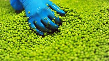Géant Vert passe chez B&G Foods.