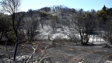Les incendies sont fréquents dans le département pendant la période estivale. (illustration)