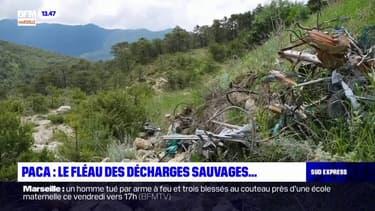 Le fléau des décharges sauvages en Provence-Alpes-Côte d'Azur