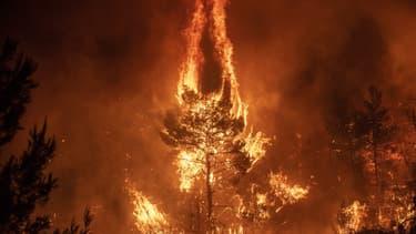 L'incendie sur l'île d'Eubée