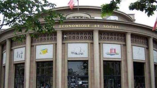 Le Conseil économique,social et environnemental (CESE)