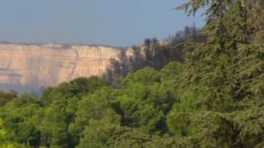 Plusieurs hectares ont brûlé dans un incendie qui s'est déclenché entre Rognac et Vitrolles.