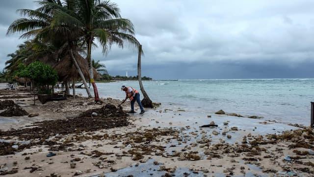 En cas de tempête causant des dégâts aux récifs, l'assureur Swiss Re s'engage à payer pour des réparer des dommages évalués entre 25 à 70 millions de dollars par an.
