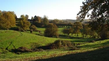 Un paysage dans la Creuse