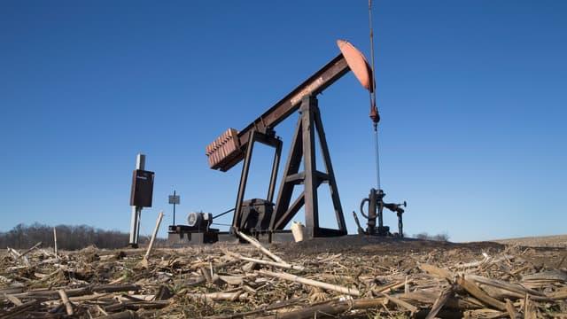 Ce sont peut-être les capitaux chinois qui vont revitaliser les champs pétrolifères texans, pour l'instant désertés par les investissements, sur fond de chute des cours.