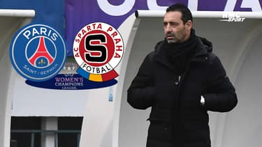 """Ligue des champions (F) : Echouafni appelle à """"la vigilance"""" avant PSG - Sparta Prague"""