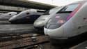 Des TGV stationnés Gare de Lyon, à Paris, en novembre 2013. (photo d'illustration)