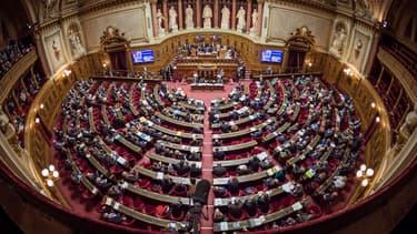 La droite, LREM et le RDSE (à majorité radicale) ont voté pour, PS et CRCE (à majorité communiste) s'y sont opposés.