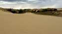 Dans la province du Manitoba, au centre du Canada, le désert disparait.
