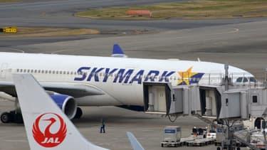 Skymark a été créée en 1996.