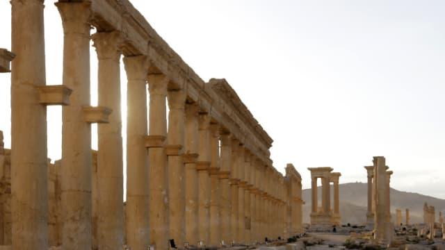 Palmyre, le 6 mai 2016.
