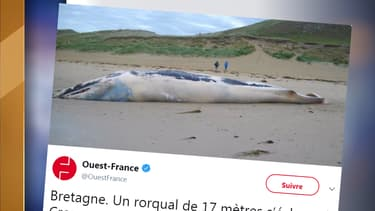Capture du tweeter de Ouest-France.